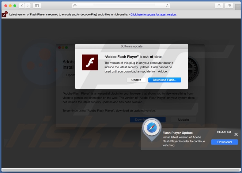 Adobe flash not updating indian dating events